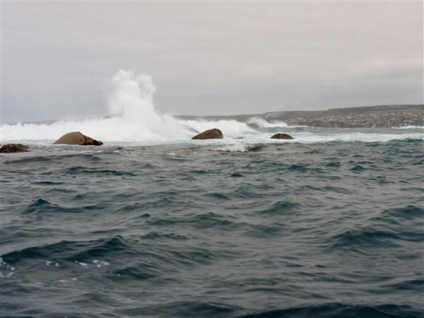 Nearing Seal Island