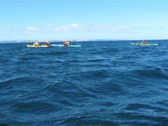 Heading out of the protection of Cape Jervis. Kangaroo Island in the distance.
