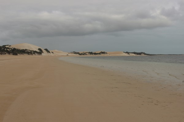 Sweeping bays bordered by sand dunes