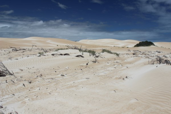 San dunes with the contrasting afternoon sky