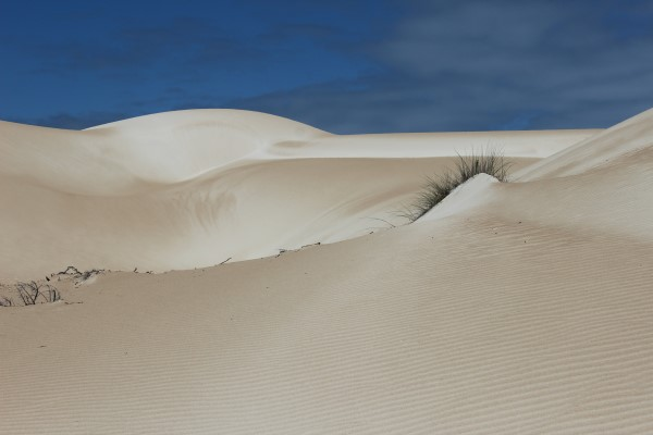 Stunning sand dunes with varying shades of colour
